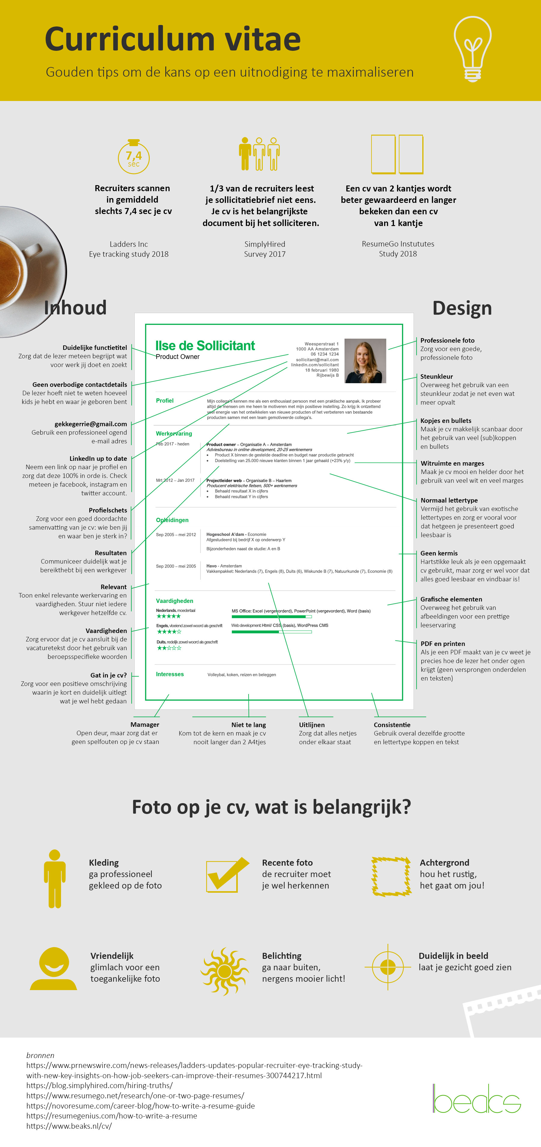 cv voorbeeld infographic